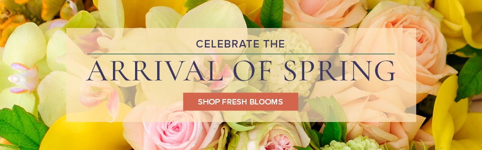 Shop Spring Flowers from VanderSalm's Flower Shop delivering to Kalamazoo and surrounding areas