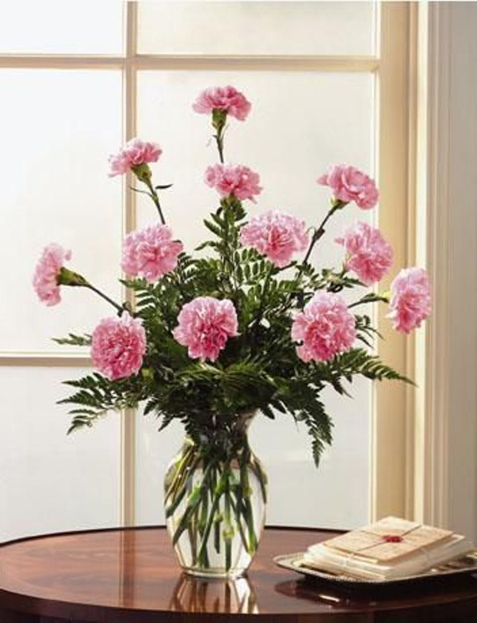 Dozen Pink Carnations Simply Sweet Add Babies Breath Fancy Greens