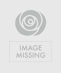 Summer Abundance Bouquet