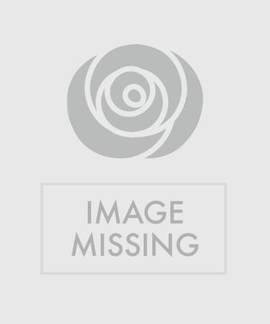 Pink and lavender flowers in a clear glass vase tied with ribbon