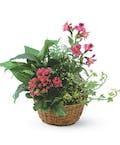 Garden Basket With Flowers Added