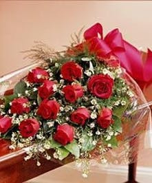 Red Roses/One Dozen Presentation Style