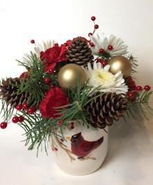 A VanderSalm's Christmas special