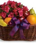 Fruit & Blooming Plant Basket